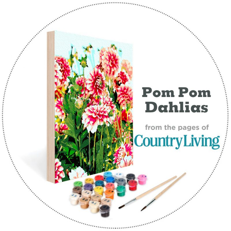 country living kit pom pom dahlia easy 123 art